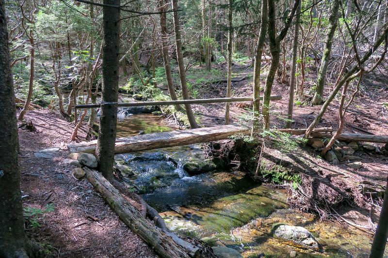 Mountains-to-Sea Trail -- 5,350'