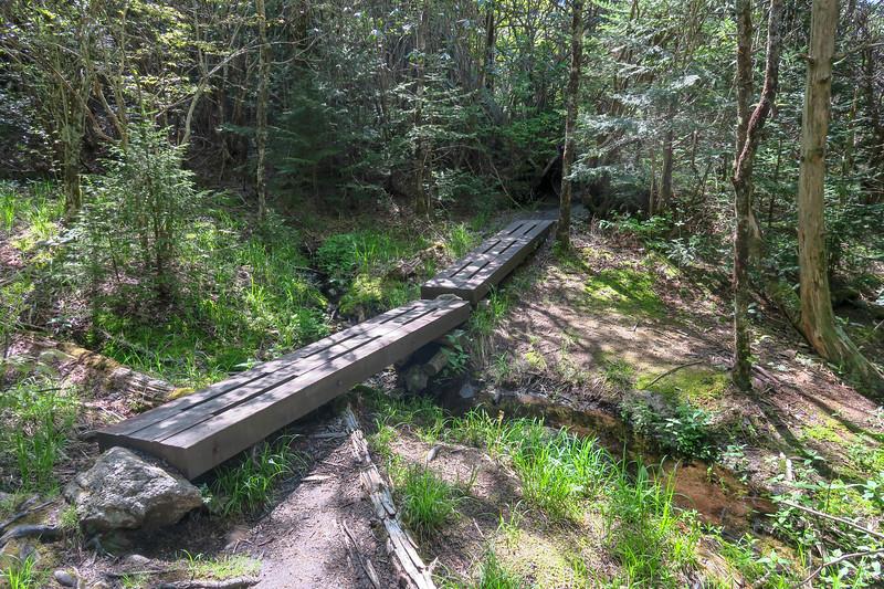 Mountains-to-Sea Trail -- 5,640'