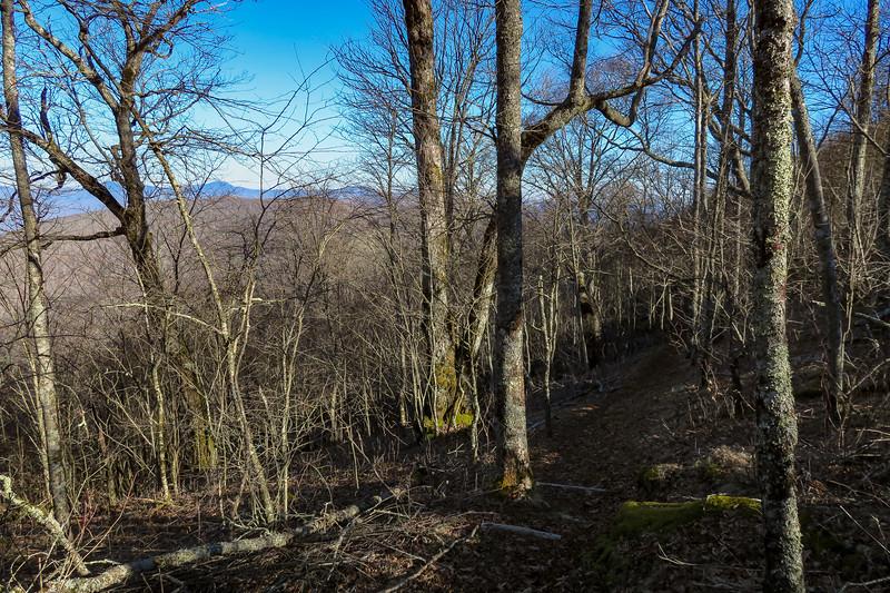 Mountains-to-Sea Trail -- 5,580'