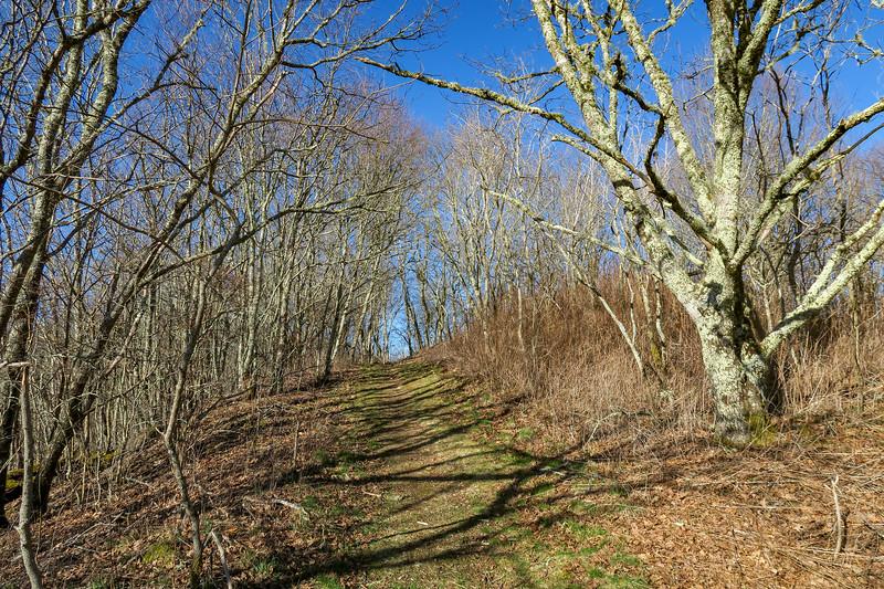 MST Access Trail -- 5,600'