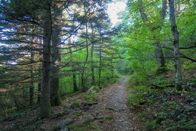 Mountains-to-Sea Trail -- 5,080'