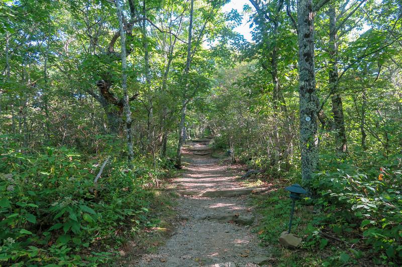 Mountains-to-Sea Trail -- 4,970'