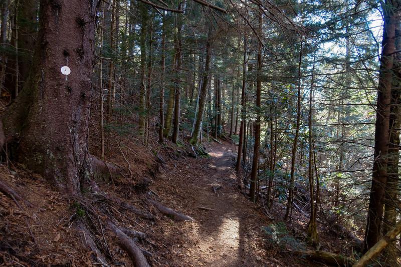 Mountains-to-Sea Trail -- 5,360'