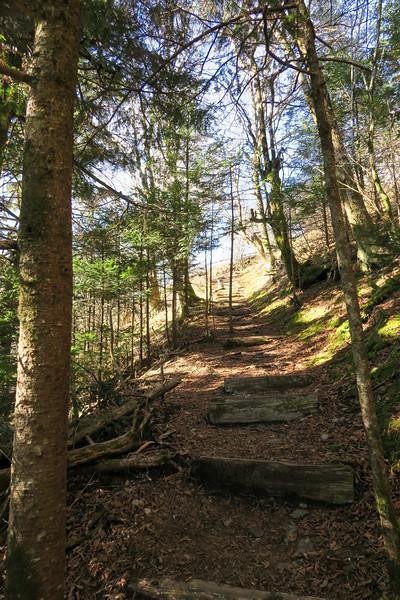 Mountains-to-Sea Trail -- 5,800'