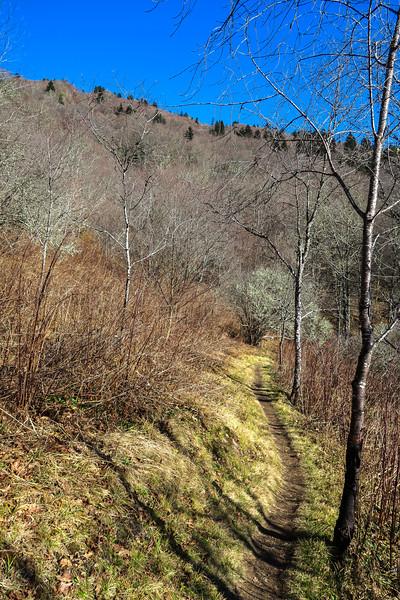 Mountains-to-Sea Trail -- 5,470'