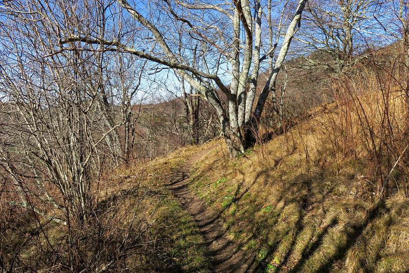Mountains-to-Sea Trail -- 5,810'