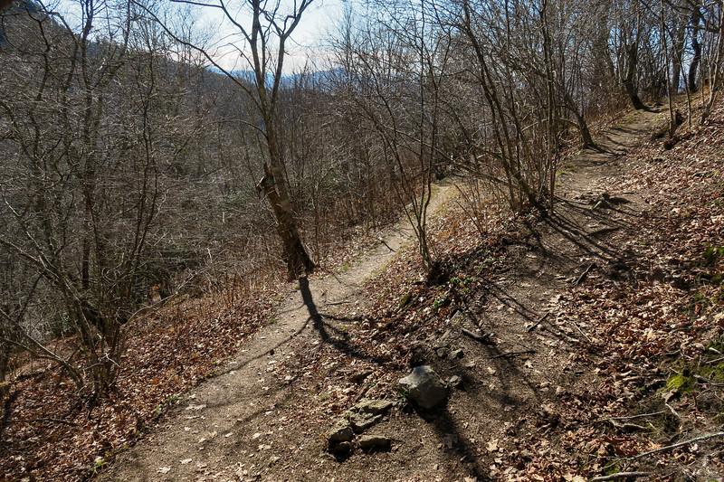 Mountains-to-Sea Trail -- 5,450'