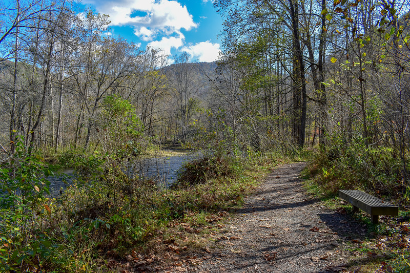 Mountains-to-Sea Trail (Oconaluftee River Trail) -- 2,000'