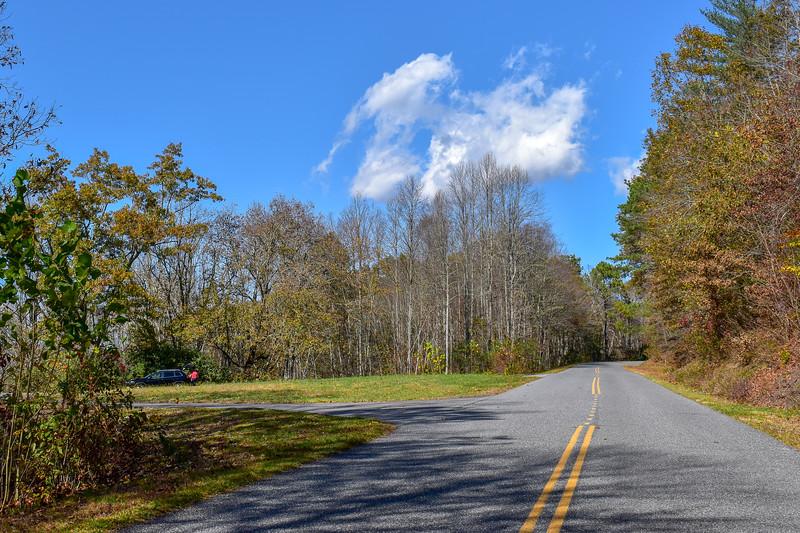 Blue Ridge Parkway/M.S.T. @ Oconaluftee Overlook -- 2,200'
