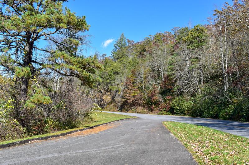 Blue Ridge Parkway/M.S.T. @ Raven Fork Overlook -- 2,400'