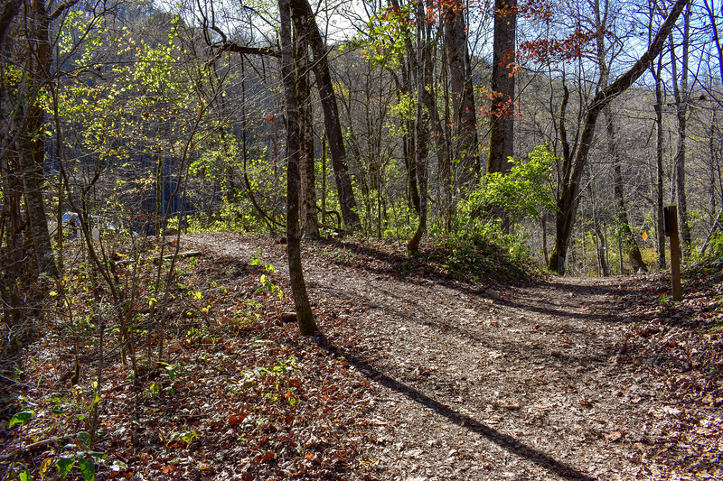 Mountains-to-Sea/Oconaluftee River Trail Junction -- 2,000'