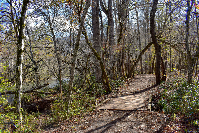 Mountains-to-Sea Trail (Oconaluftee River Trail) -- 2,010'