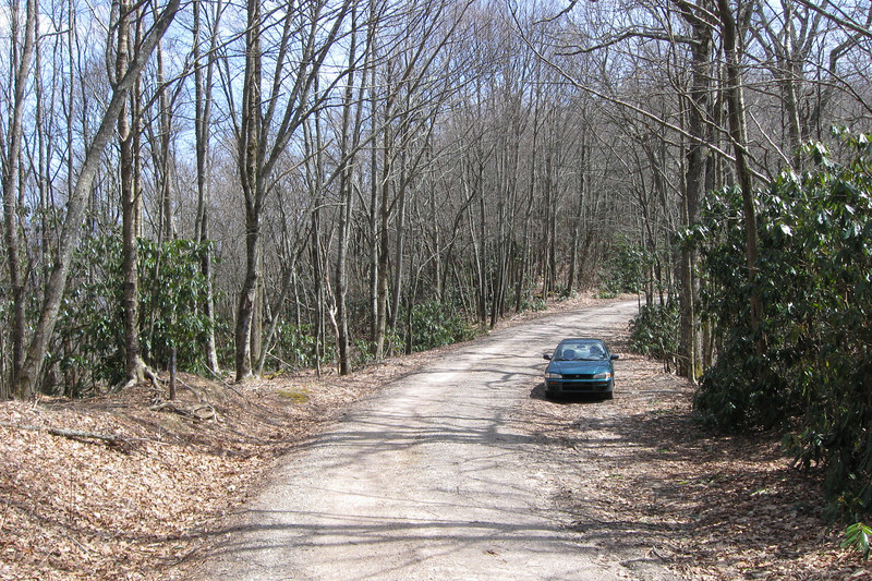 Forest Road 67 - Bearpen Gap