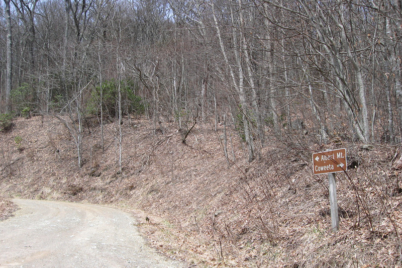 Mooney Gap - Forest Road 83