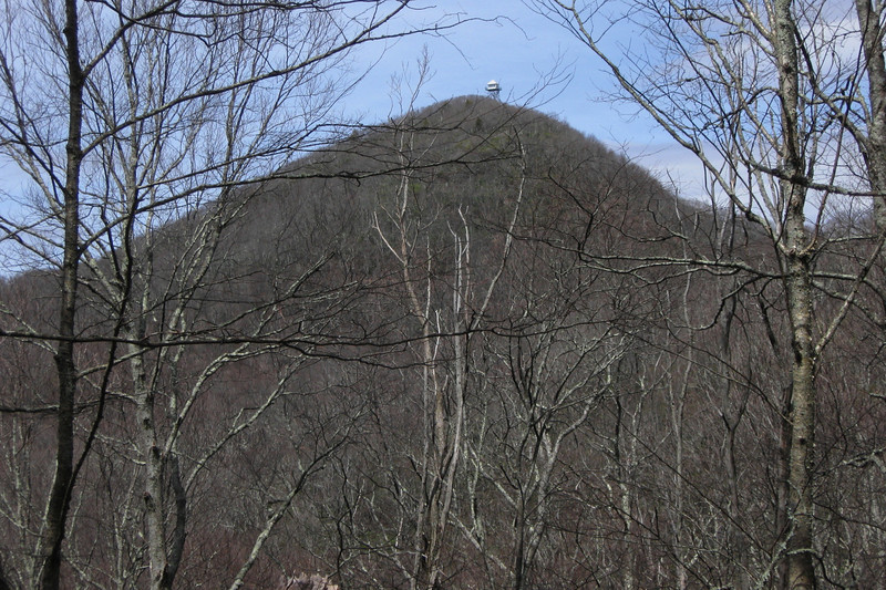 Albert Mountain from F.R. 67