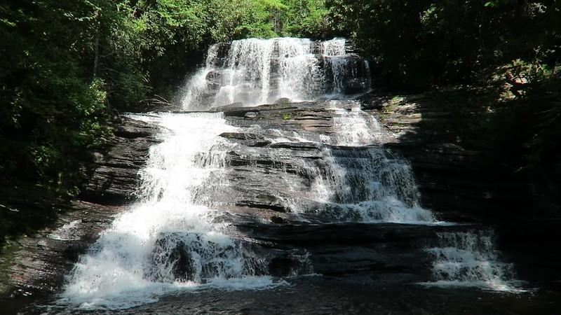 Patricia Falls