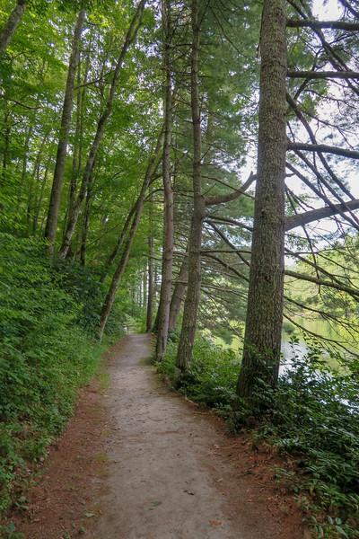 Mallonee Trail