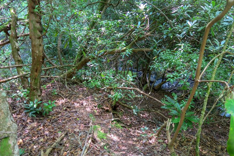 Balsam Falls-Lower Balsam Falls Route