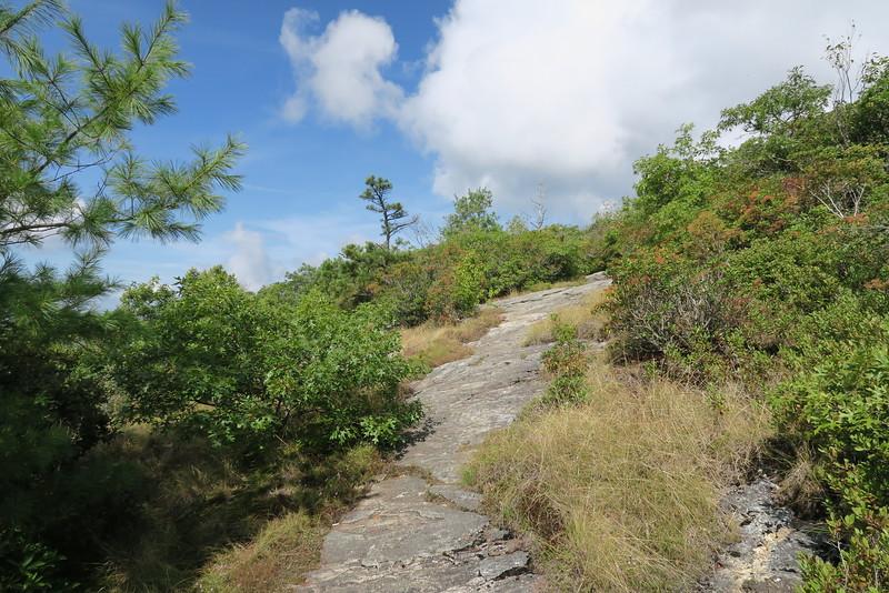 Bartram Trail - 4,720'
