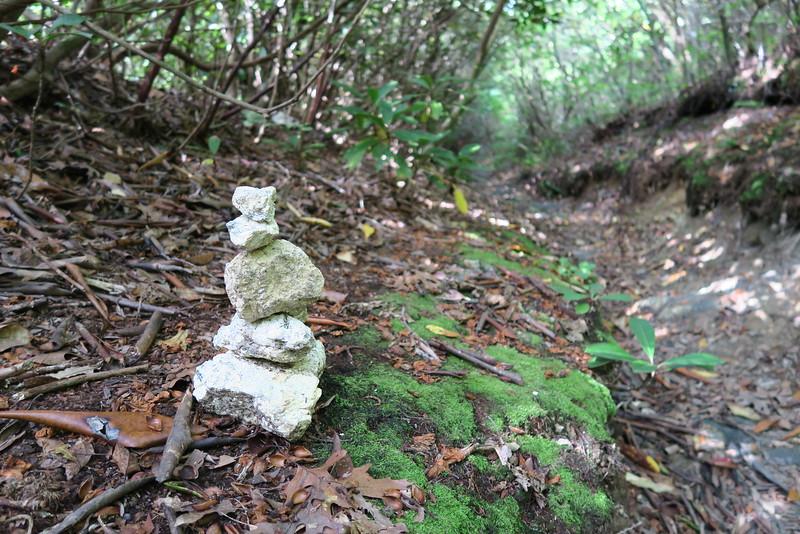Bartram Trail - 4,500'