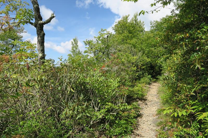 Bartram Trail - 4,350'
