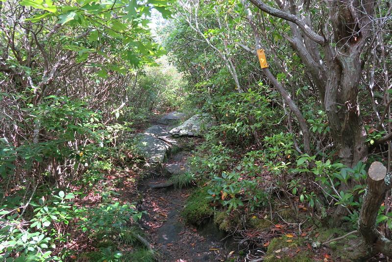 Bartram Trail - 4,780'