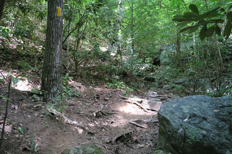 Bartram Trail - 3,760'