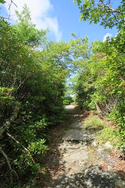 Bartram Trail - 4,700'