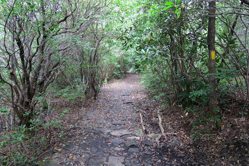 Bartram Trail - 4,620'