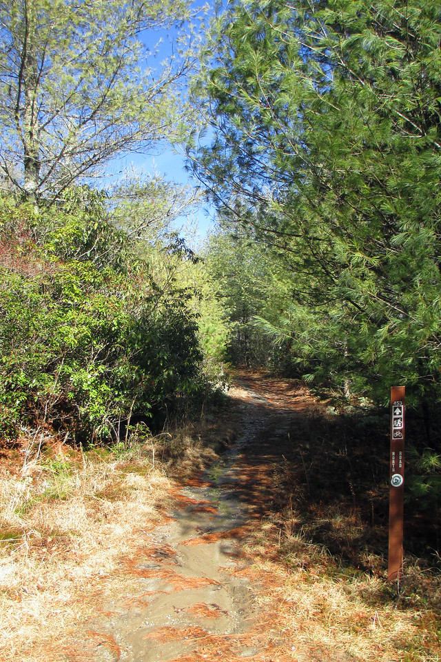 North Road Trail