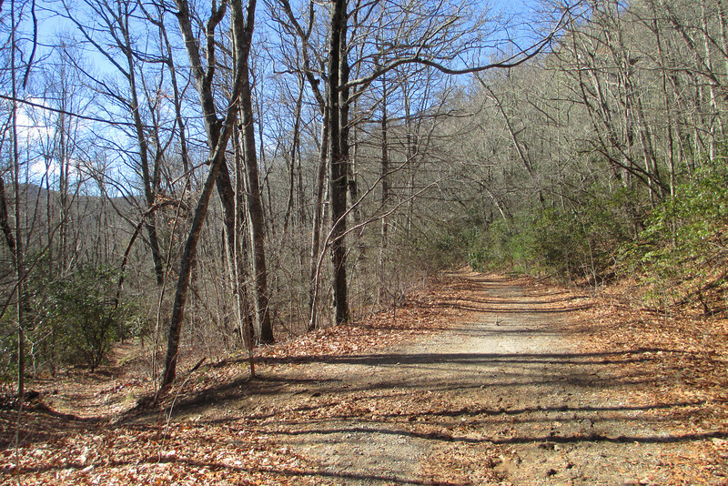 Panthertown Valley-Wilderness Trail Junction