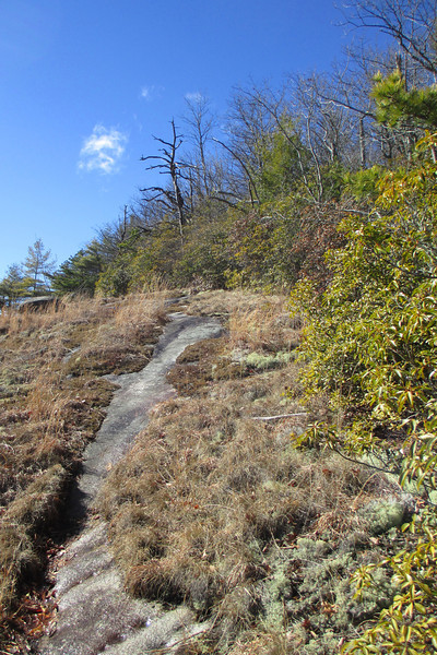 Overlook Trail