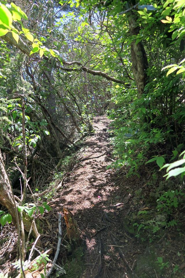 Blackrock Trail - 5,770'