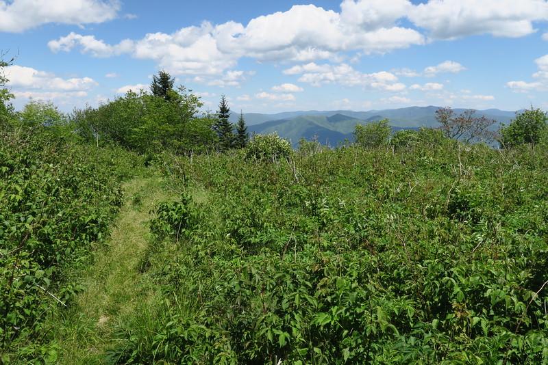 Blackrock Trail - 6,032'