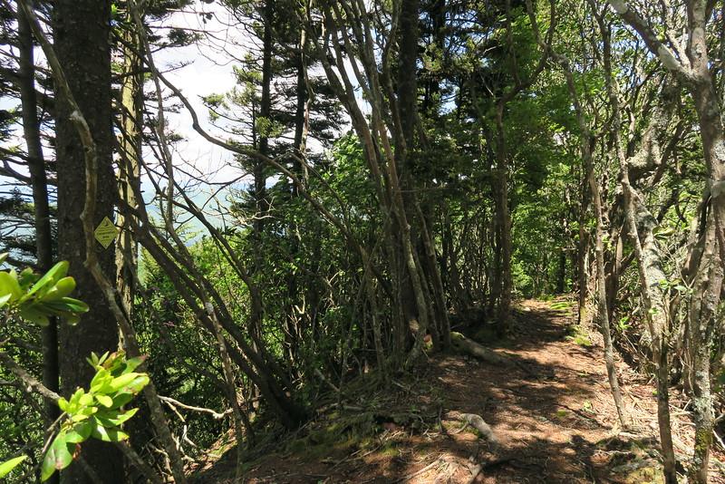 Blackrock Trail - 5,780'