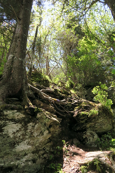 Blackrock Trail - 5,740'