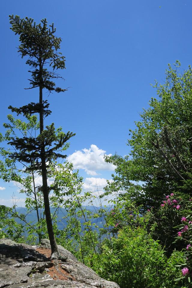 Blackrock Trail - 5,760'