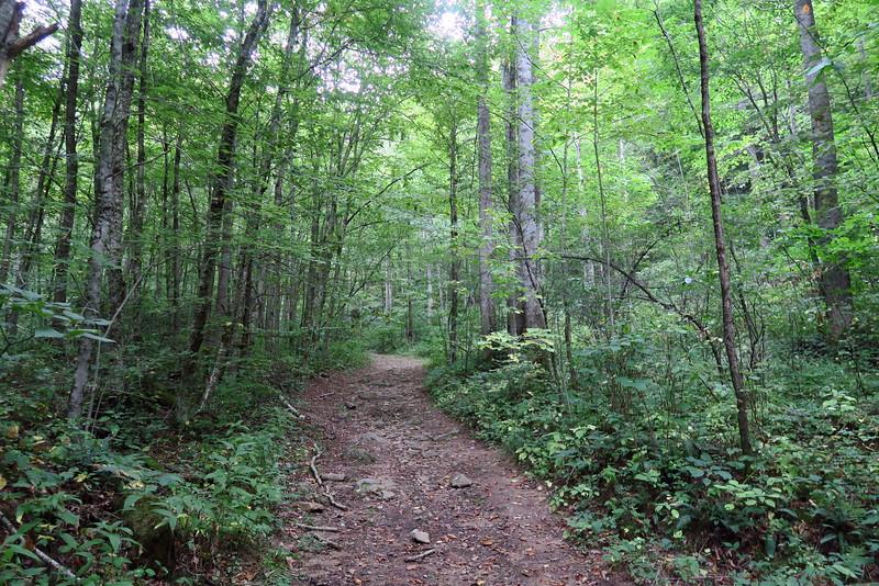 Sugar Creek Road/Trail