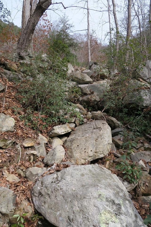 Cedar Cliff Bushwhack - 2,560'