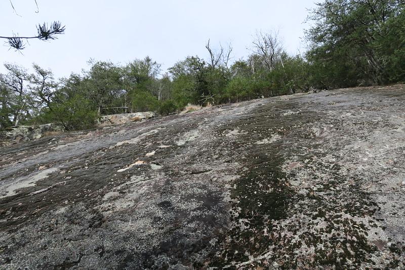 Cedar Cliff Bushwhack - 3,150'