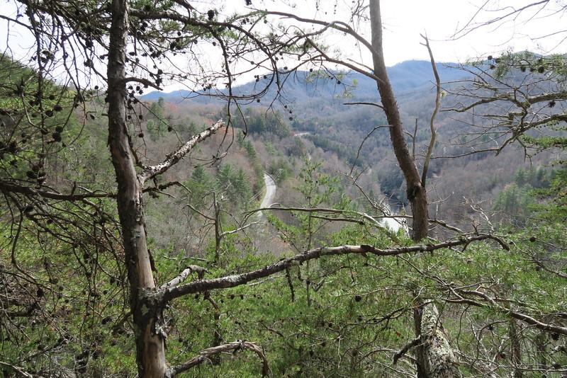 Cedar Cliff Bushwhack - 2,800'