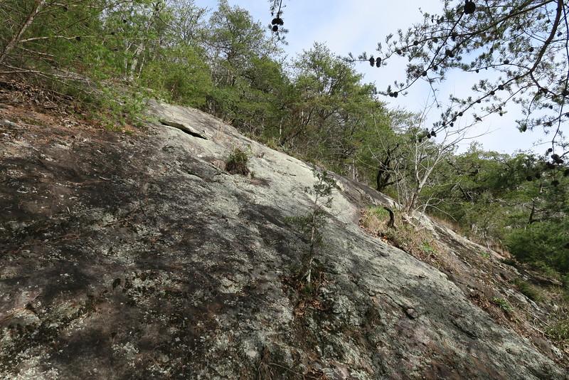 Cedar Cliff Bushwhack - 3,000'