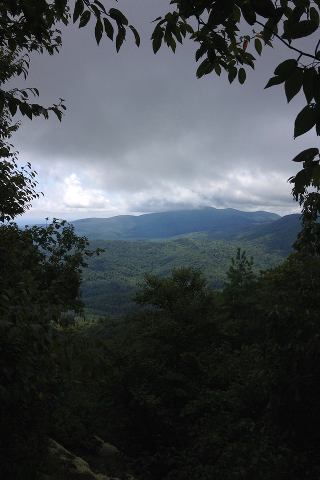 Chinquapin Mountain Trail - Lookout #2