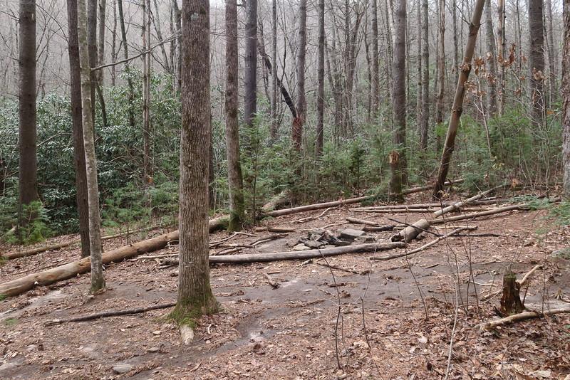 Dismal Falls Trail - 2,870'