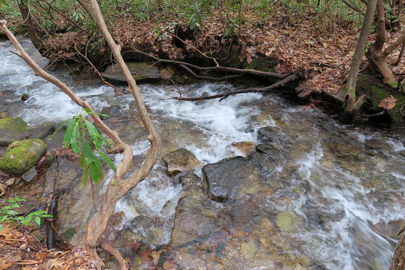 Dismal Falls Trail - 2,850'