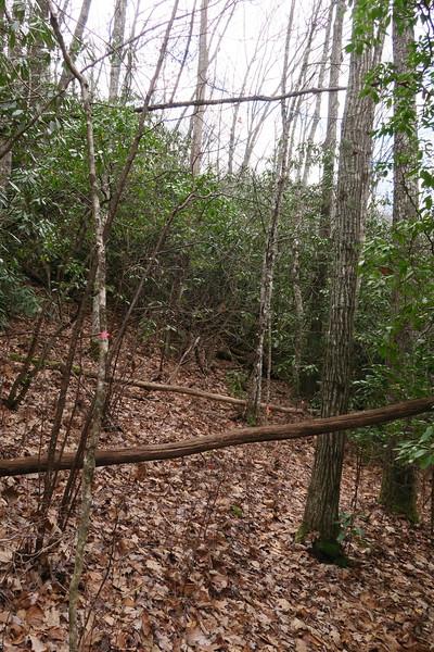 Rhapsodie Falls Spur - 3,200'