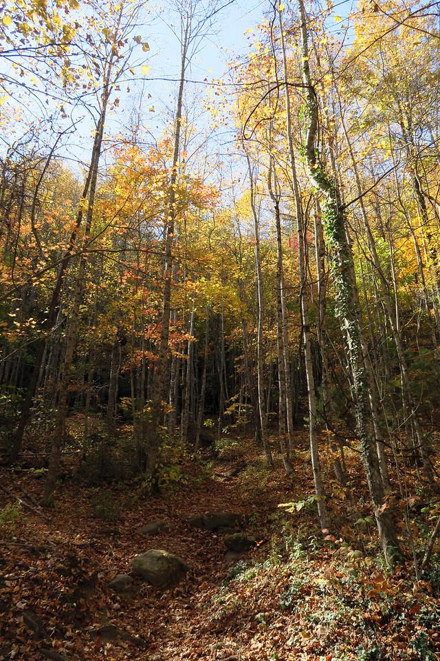 Granite City Trail