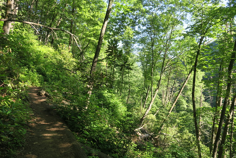 High Falls Trail