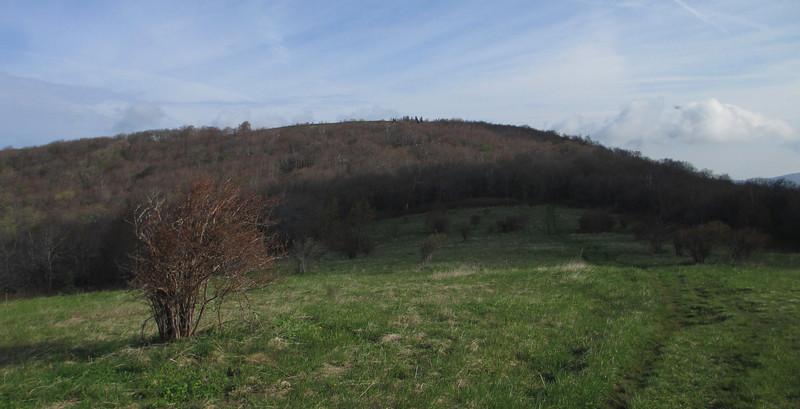 Oak Knob - 5,440'