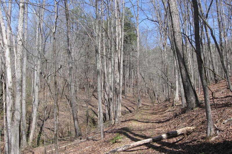 Jackrabbit Mountain Loop 'A' Trail
